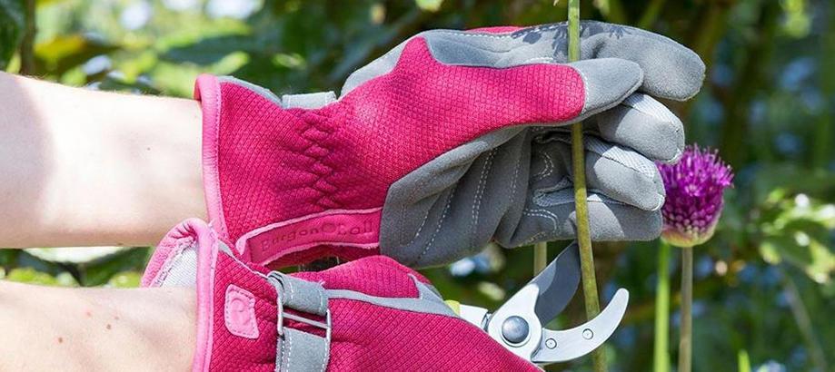 Header_for-the-gardener-cottage-gardener-love-the-glove