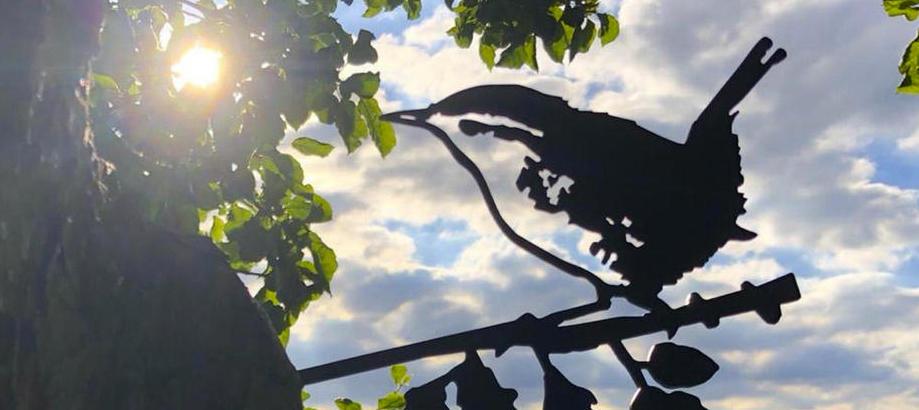 Header_cat-image-for-the-gardener-for-the-over-60s-metal-bird