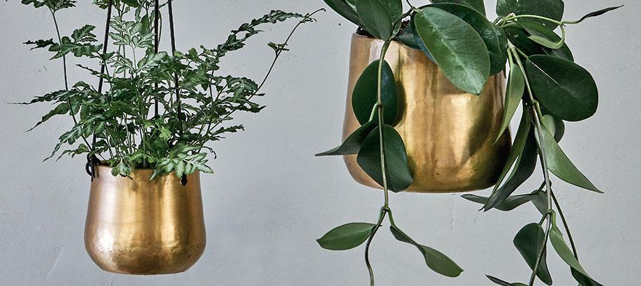 Header_category-indoor-plant-pots-antique-brass-hanging-pots