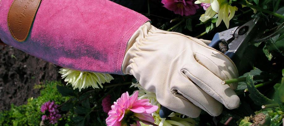 Header_for-the-gardener-pink-garden-gifts-pink-pruning-gauntlets