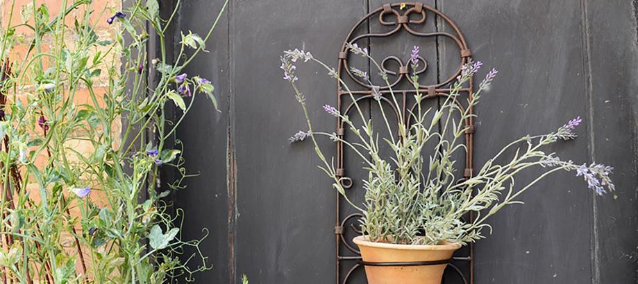 Header_garden-art-and-decor-wall-decor-morrocan-pot