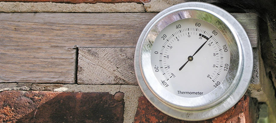 Header_garden-guidence-under-20-galvanised-thermometer