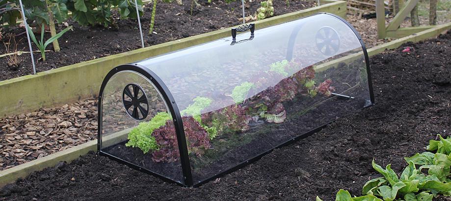 Header_plant-stuff-propagation-_-protection-kitchen-garden-cloche