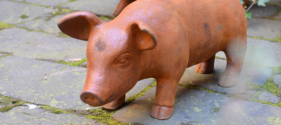 Header_for-the-gardener-gifts-for-him-cast-iron-pigs