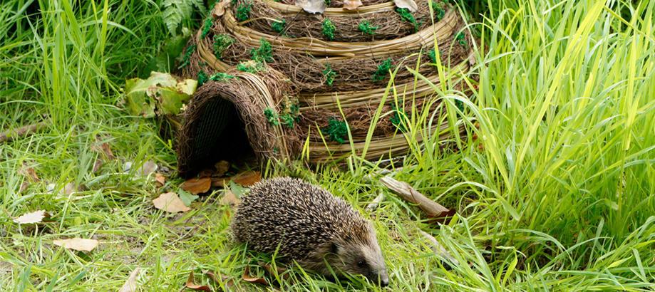 Header_garden-friends-gifts-between-25-50-hedgehog-igloo