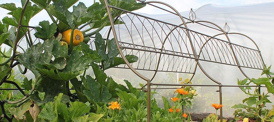 Header_garden-art-and-decor-vegetable-garden-decor-ornamental-frame