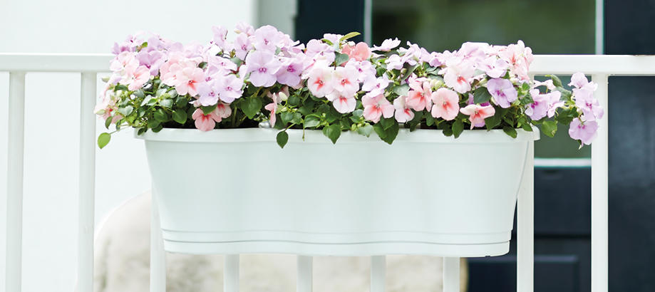 Header_plant-stuff-window-boxes-and-troughs-triple-hanging-balcony-planter