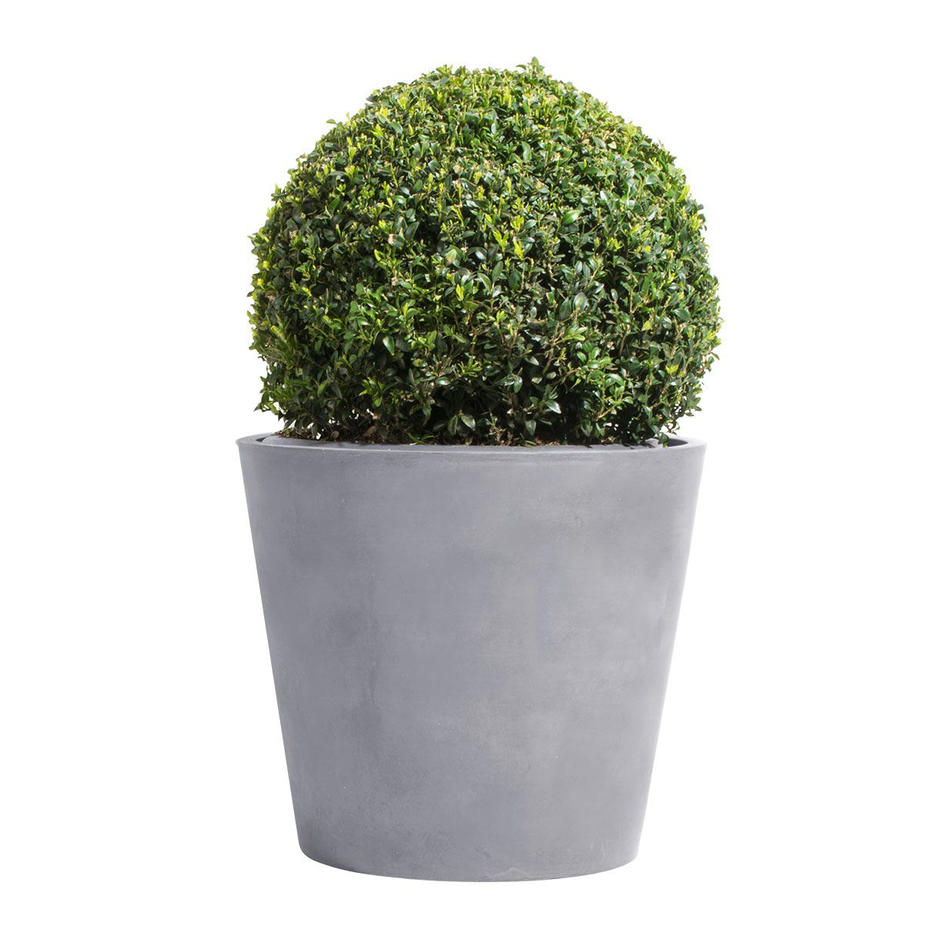 Conical Eco Planters
