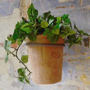 Cottage Garden Wall Pot