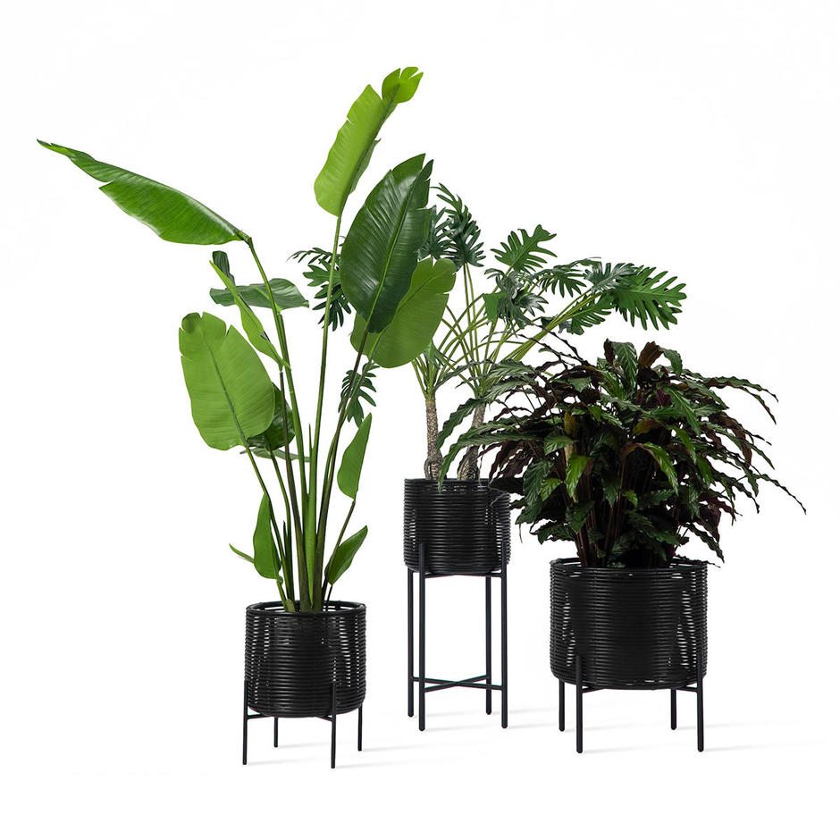 Ivo Planter on Stand