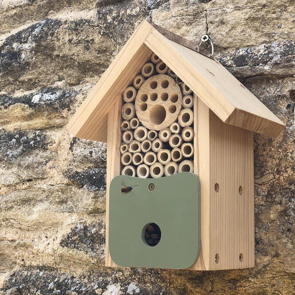 Solitary Bee Barn