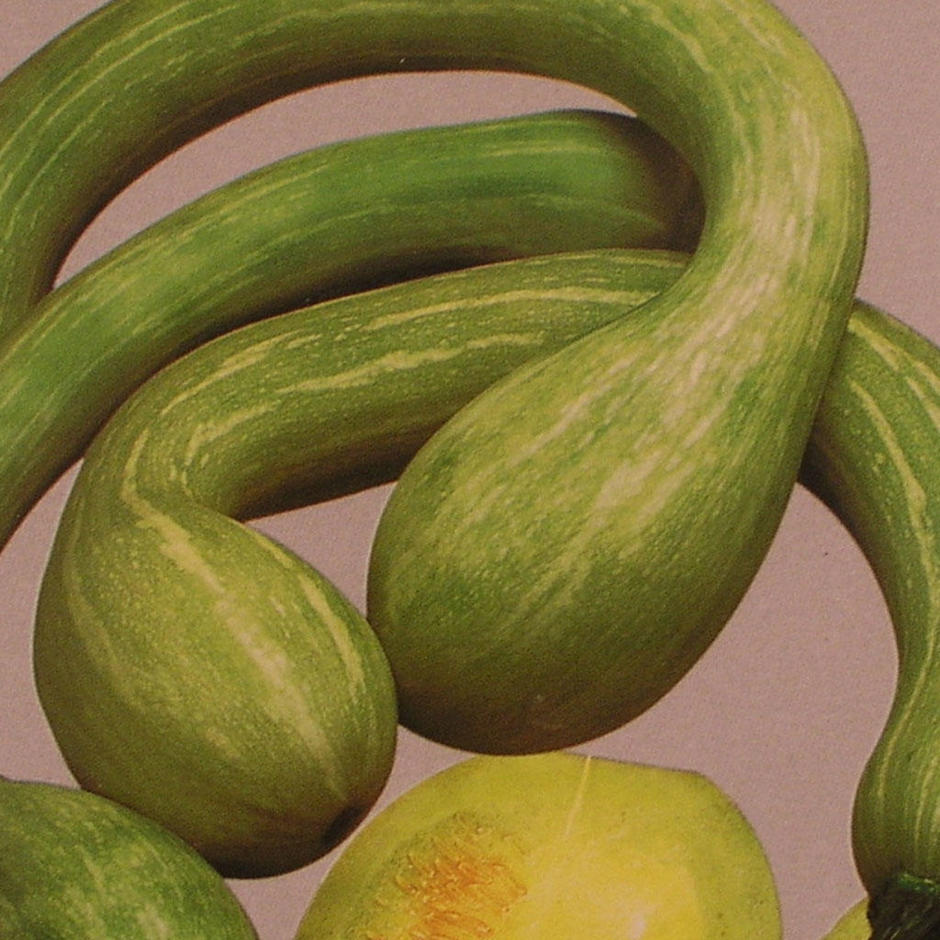 Italian Squash & Courgette Seeds