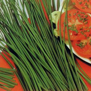 Kitchen Garden Herb Seeds