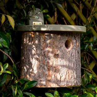 National Trust Natural Log Nester