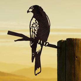 Metalbird Harris Hawk Silhouette