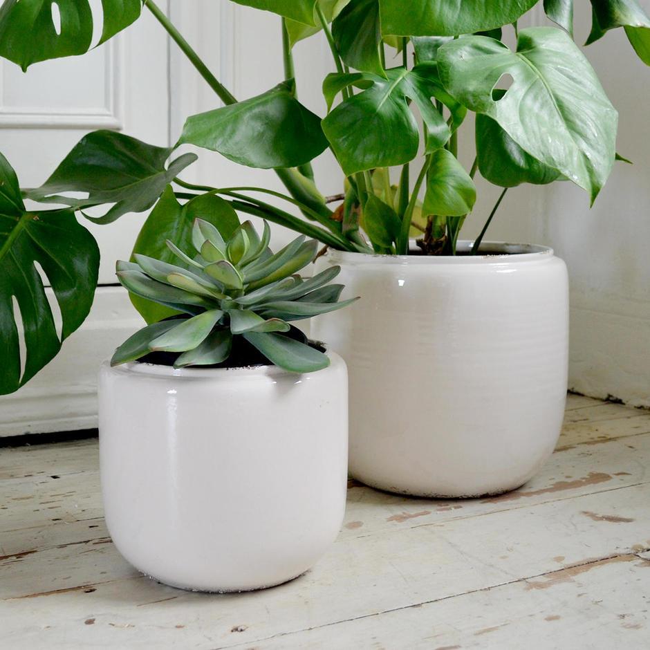 Ceramic Indoor White Plant Pots