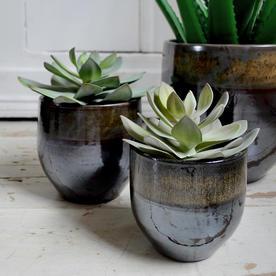 Indoor Plant Pots with Black Green Glaze