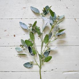 Icy Seeded Eucalyptus Spray