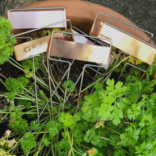 Copper Plant Marker Set of 6