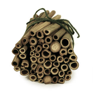 Solitary Bee Nesting Tubes