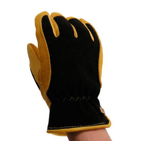 Winter Touch Gloves