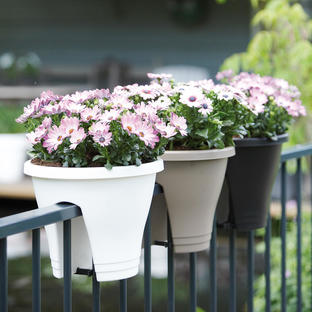 Urban Balcony Planter