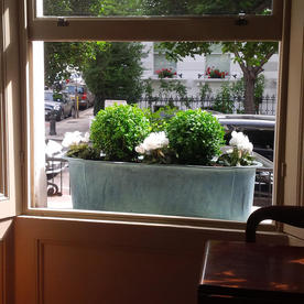 Provencal Window Box