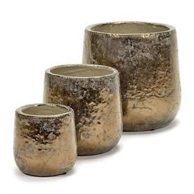 Divine Gold Indoor Plant Pots
