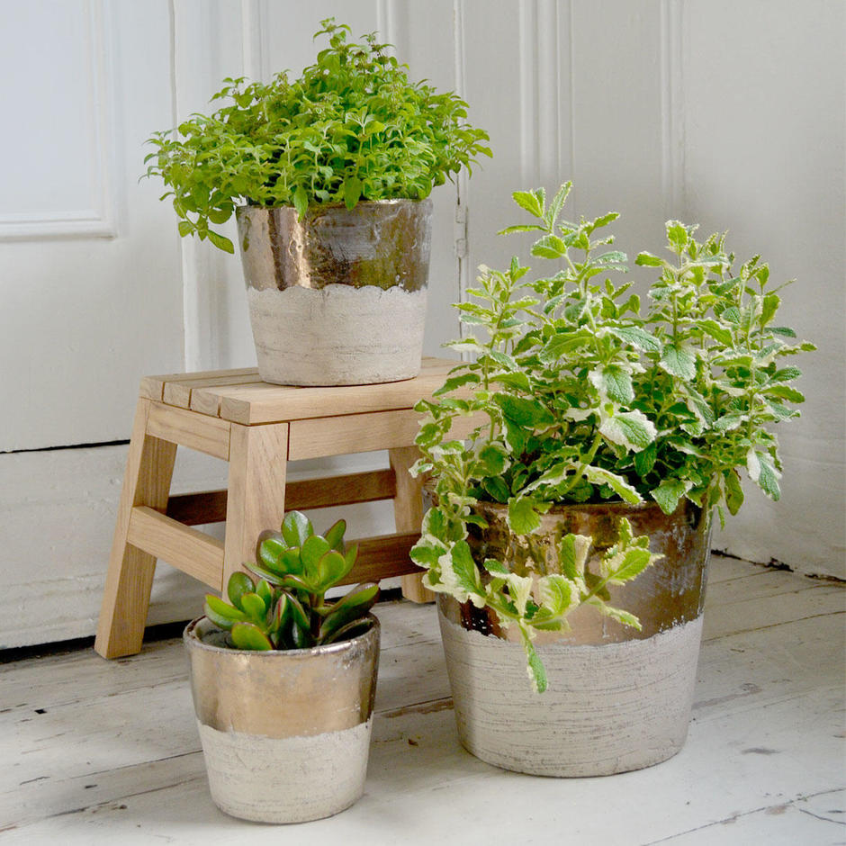 Conic Cream and Gold Indoor Pots