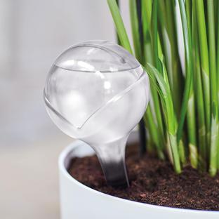 Aqua Care Watering Globes