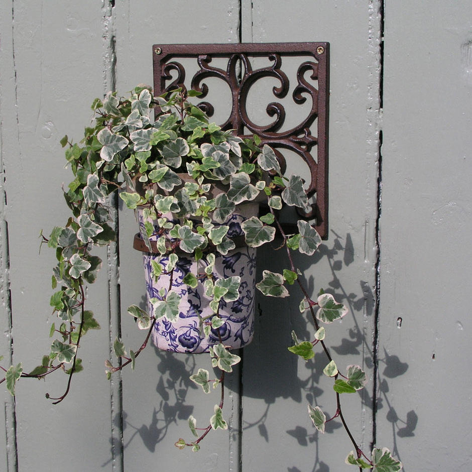 Classic Wall Pot Holder and Pot