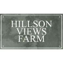 Smooth Green Slate Three Line House Sign with Border - Size 3