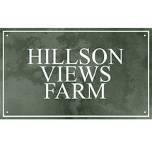 Smooth Green Slate Three Line House Sign with Border - Size 4