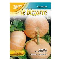 Pumpkin Zucca Da Marmellata Seeds