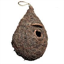 Small Bird Roosting Nester