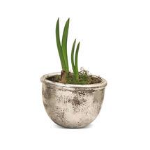 Silver Mixed Shape Pot - Squat