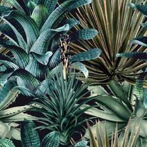 Wallpaper Lush Succulents