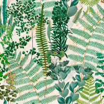 Wallpaper Green Sanctuary