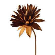 Rusted Cornflower