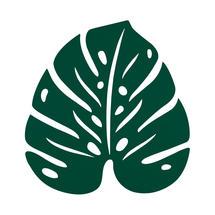 Monstera Leaf Trivet - Cedar Green