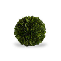 Preserved Topiary Ball 15cm - Small