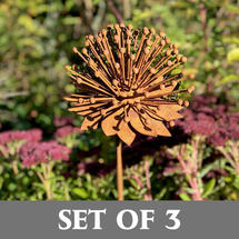 Rusted Enchinacea Flower - Set of 3