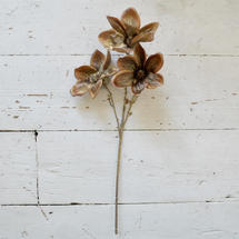 Gold Brushed Faux Magnolia Stem - Burnished Coffee