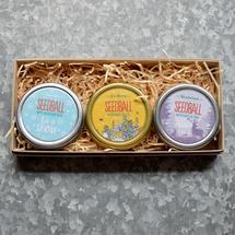 Festive Fun Collection - Seed Tin Gift Box