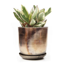 Lustre Planter with Saucer - Silver