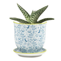 Retro Mini Planter with Saucer - Blue Birds