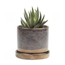 Contemporary Mini Pot with Saucer - Bronze Speckles