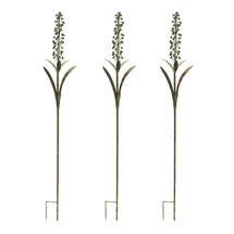 Foxtail Lily - Set of 3 Stems