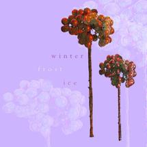 Xmas Card 5pk-Frosted Velvet