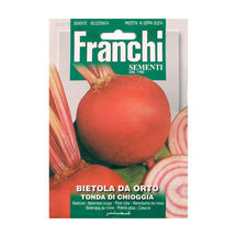 Beetroot of Chioggia